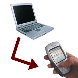 Offer Bulk text messages for 10 Euros and windows application for sending or web address for doing the same.